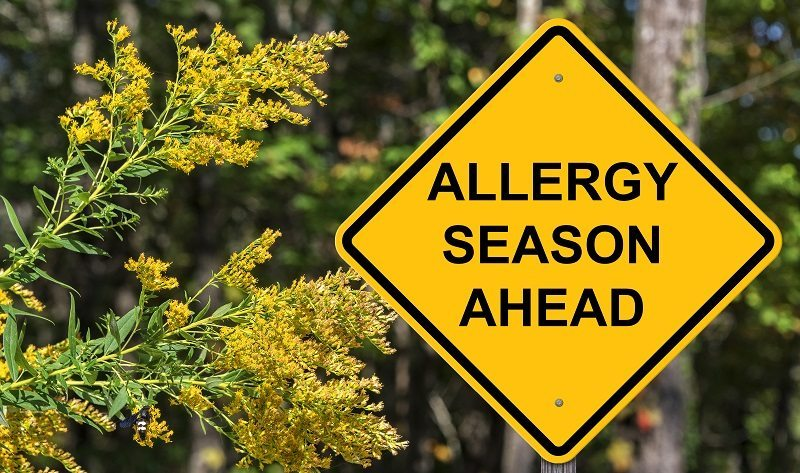 Allergies: Common Causes, Symptoms, and Treatment