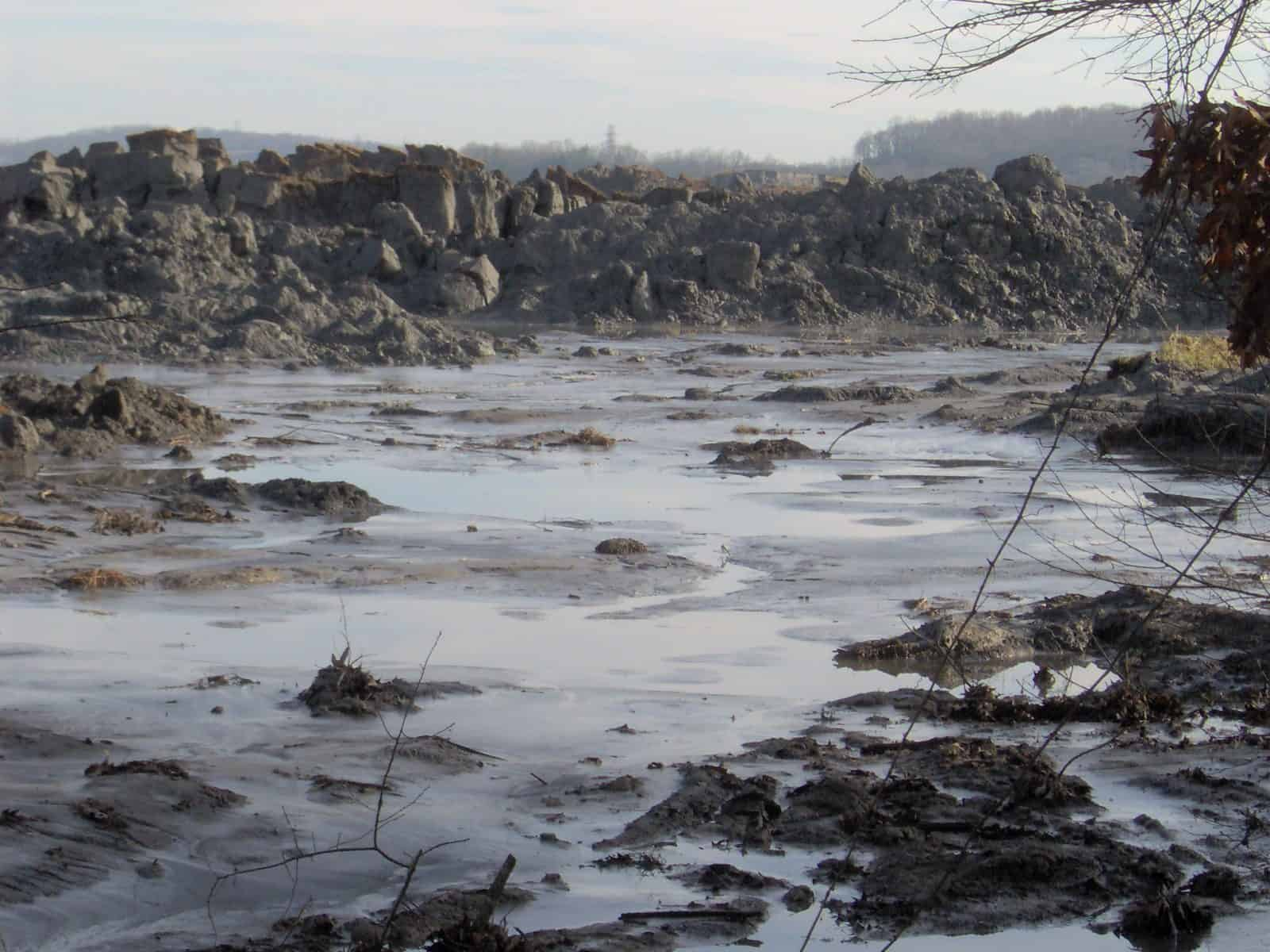 Lasting Impact of the Kingston Fossil Plant Coal Ash Spill